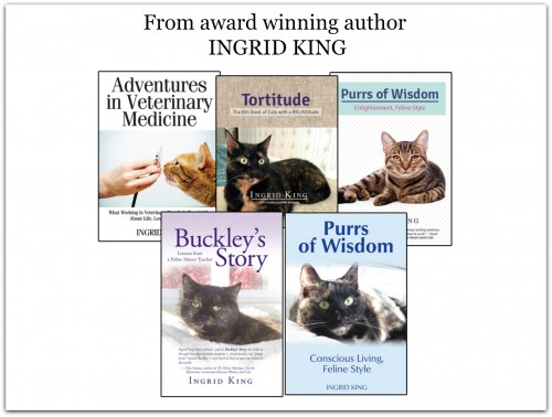 five books award winning author